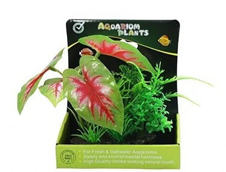 Растение аквариумное Композиция №43, 15 см