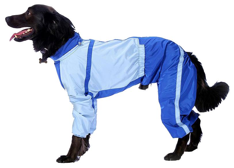 Комбинезон для собак ТУЗИК женский, голубой, длина спины 39 см