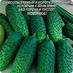 Семена Огурец Малышок-крепышок F1, 10 шт, Плазмас