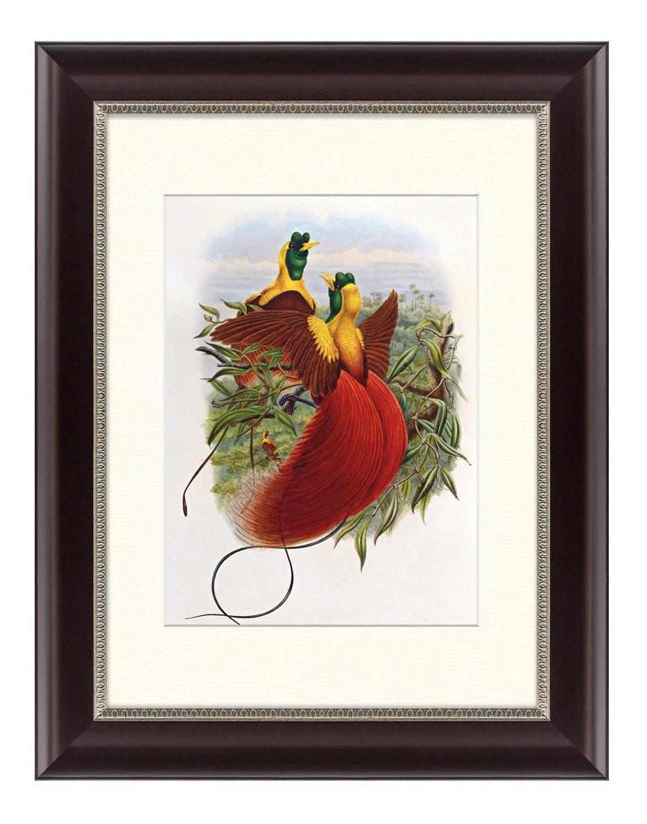 Картина Картины в Квартиру Красные Райские Птицы (35х45 см) красные райские птицы 35 х 45 см по цене 2 495