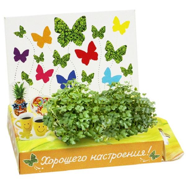 Выпускным начальной, открытка с семенами цветов