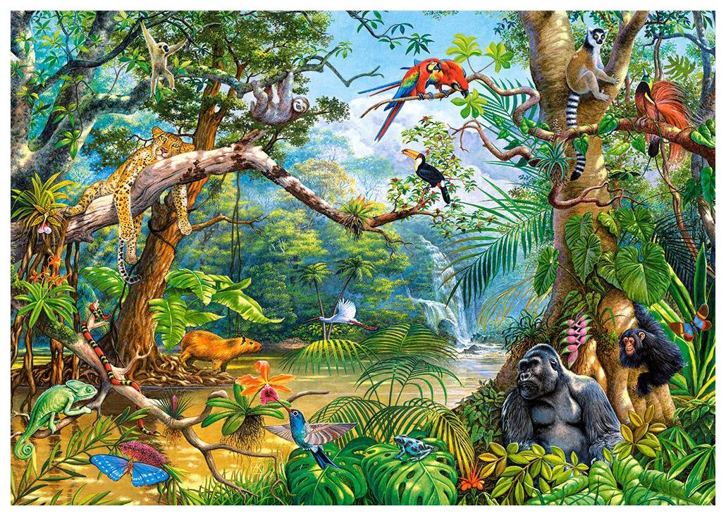 занимательные картинки о лесе радует своих