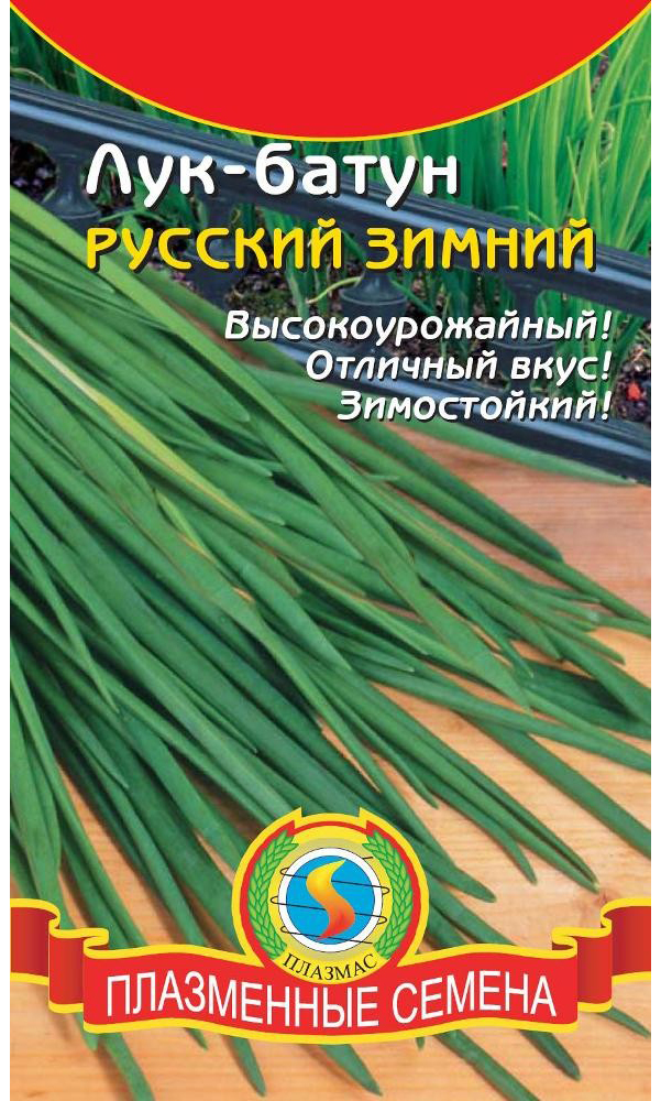 Семена Лук батун Русский зимний, 0,9 г, Плазмас
