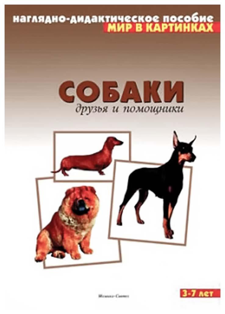 Купить Плакат Собаки Друзья и помощники, Мозаика-Синтез, Подготовка к школе