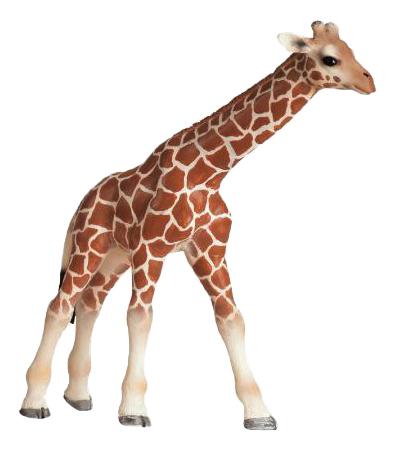 Купить Детеныш жирафа, Фигурка животного Schleich Детеныш жирафа, Игровые фигурки
