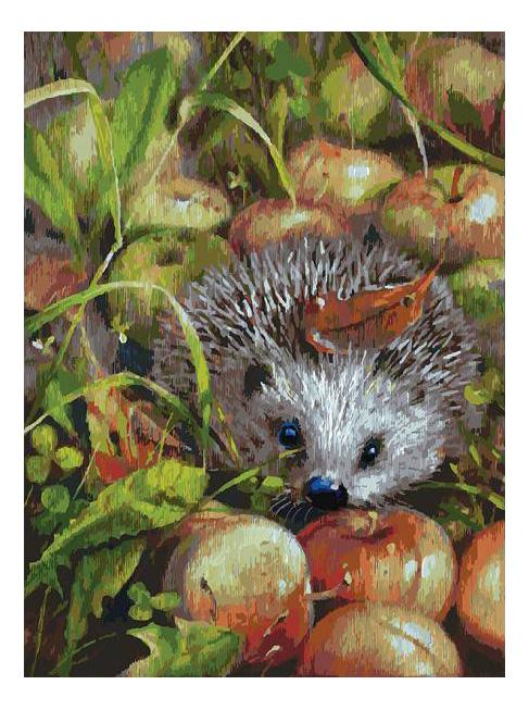 Раскраска по номерам Белоснежка Яблочный ежик