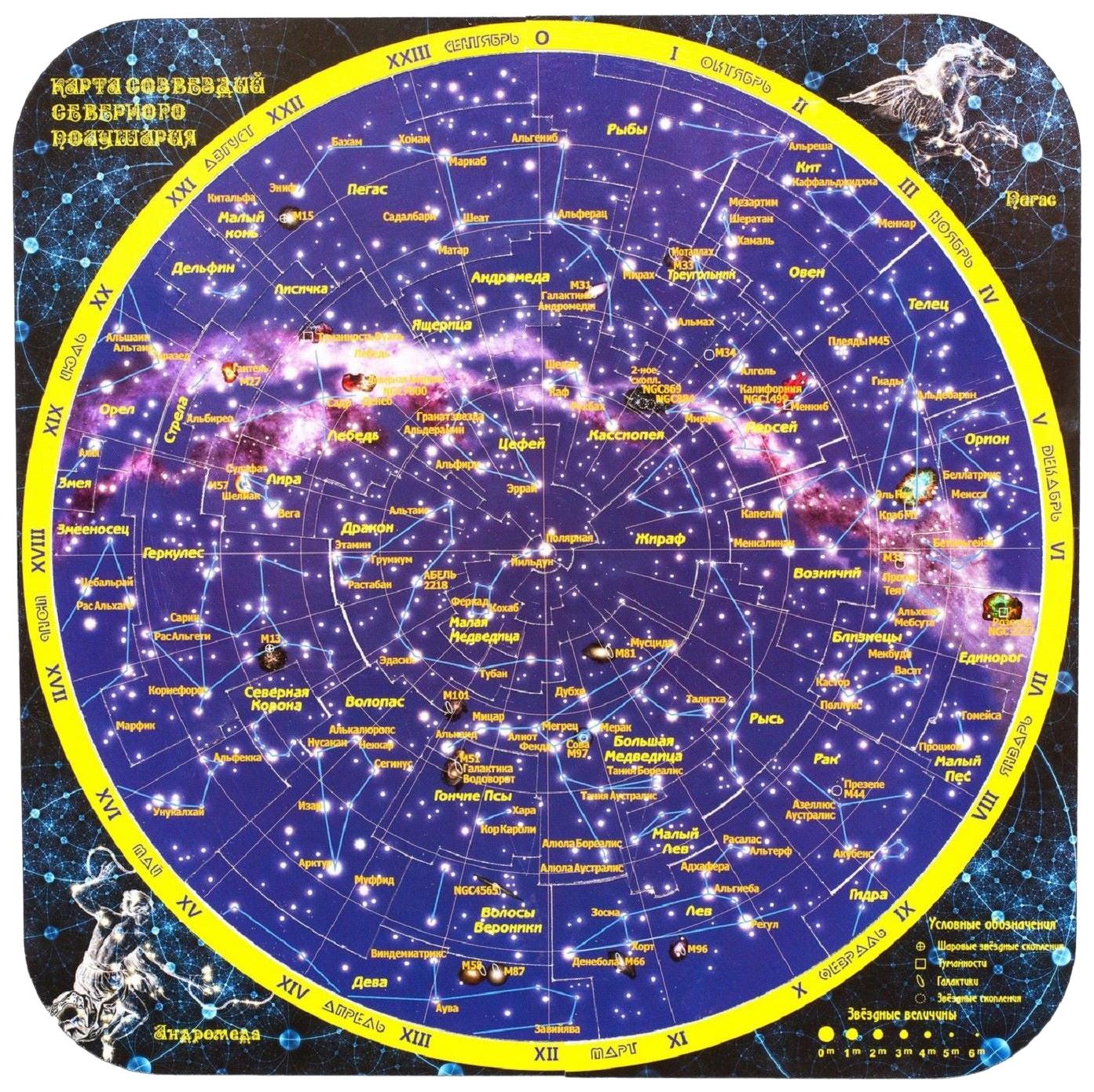 Купить Пазлы Геомагнит Карта созвездий северного полушария Магнитный 42 элемента