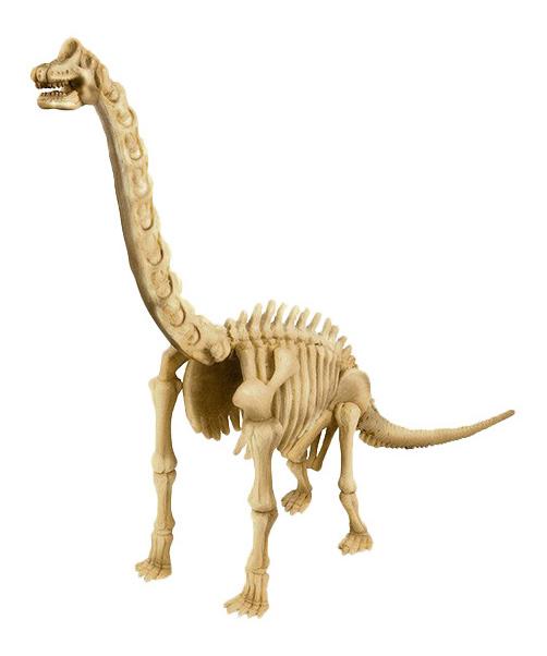 Купить Скелет Брахиозавра, Набор для исследования 4M Скелет Брахиозавра, Наборы для опытов
