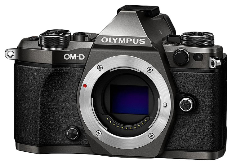 Фотоаппарат системный Olympus OM-D E-M1 Mark II Black фото