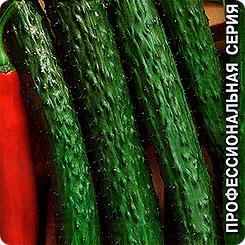 Семена Огурец Изумрудный поток F1, 0,2