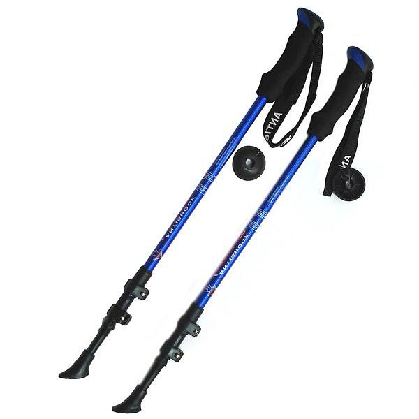 Палки для скандинавской ходьбы F1844 135 см