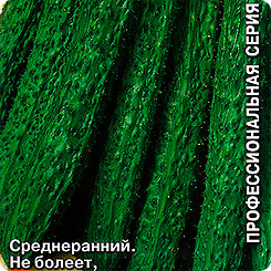 Семена Огурец Китайский Болезнеустойчивый, 0,2 г, СеДеК 61678 по цене 35