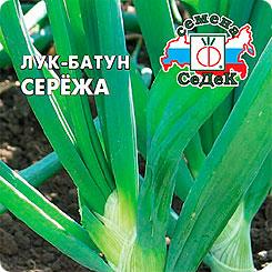 Семена Лук батун Сережа F1, 0,3