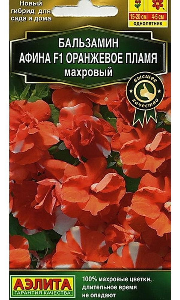 Семена Бальзамин махровый Афина Оранжевое пламя F1, 5 шт, Высшее качество АЭЛИТА фото
