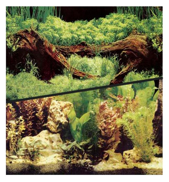 Фон для аквариума двухсторонний растительный 10 см