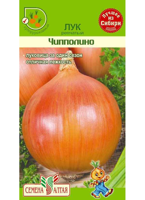 Семена Лук репчатый Чипполино, 1 г, Семена
