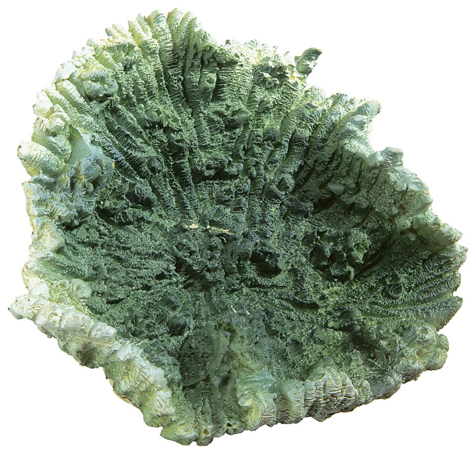 Искусственный коралл Ferplast BLU 9135 маленький зеленый