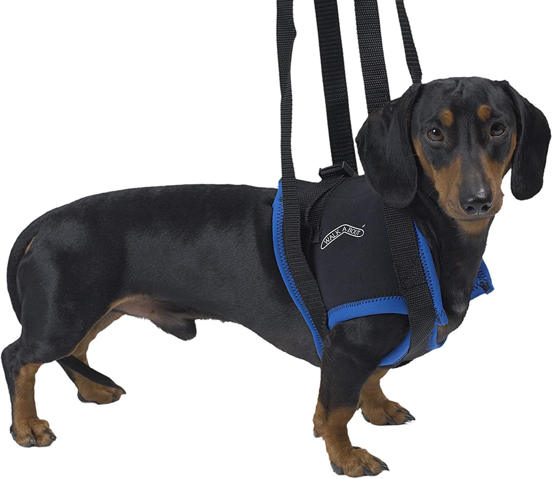 Вожжи для животных Kruuse Walkabout Harness на передние конечности для собак синий M-L.