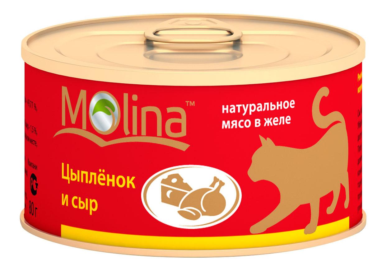 Консервы для кошек Molina, цыпленок, сыр, 80г