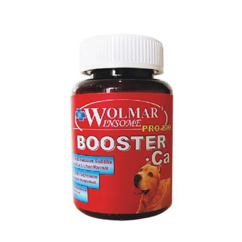 Витаминный комплекс для щенков Wolmar Winsome BoosterCa