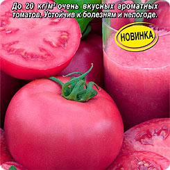 Семена Томат Мадам Кураж F1, 0,05