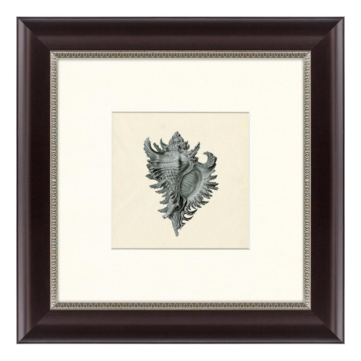 Картина Картины в Квартиру Морской обитатель №1 35 х 35 см морской обитатель №1 35 х 35 см по цене 2 490