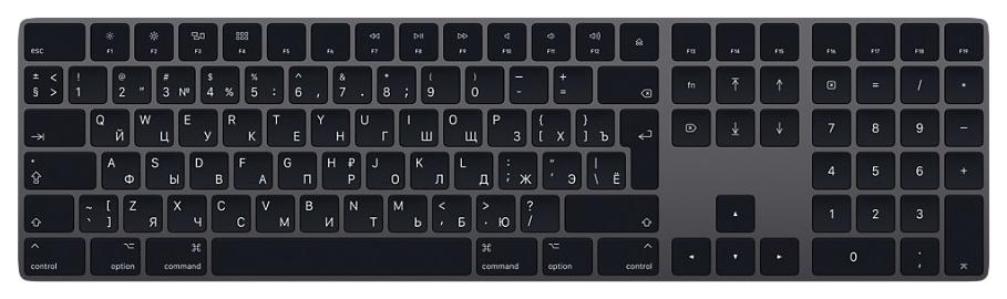 Беспроводная клавиатура Apple Magic Keyboard Grey (MRMH2RS/A) фото