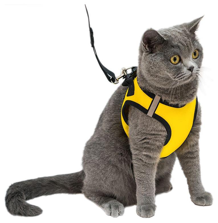 Шлейка и поводок для кошек и собак