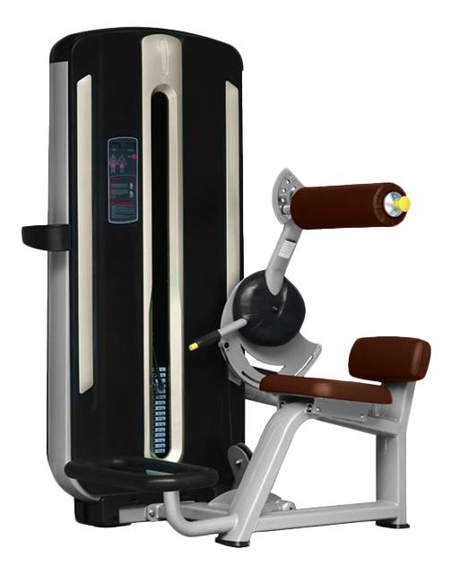 Тренажер для спины Bronze Gym MNM-009 фото