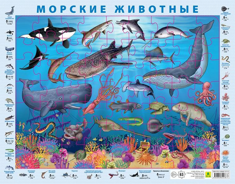 Морские животные. Пазл детский на подложке (36х28 см., 63 эл.)