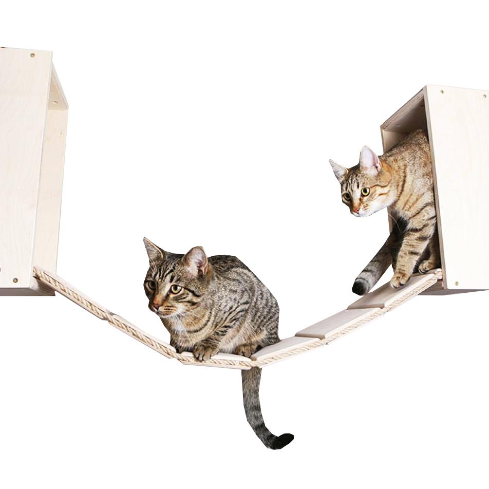 Мостик для кошек Мы бобры Кумотто потолочный