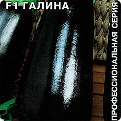 Семена Баклажан Галина F1, 0,1 г, СеДеК