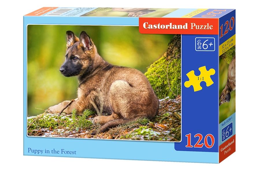 Пазл Castorland 120 деталей, Щенок в лесу, Пазлы  - купить со скидкой
