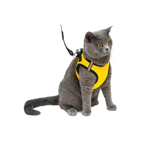 Комплект Шлейка+Поводок для кошек и собак Дарэлл