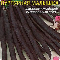 Семена Фасоль кустовая спаржевая Пурпурная малышка, 5 г, Плазмас