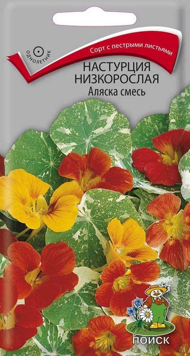 Семена Настурция низкорослая Аляска, Смесь, 1 г Поиск