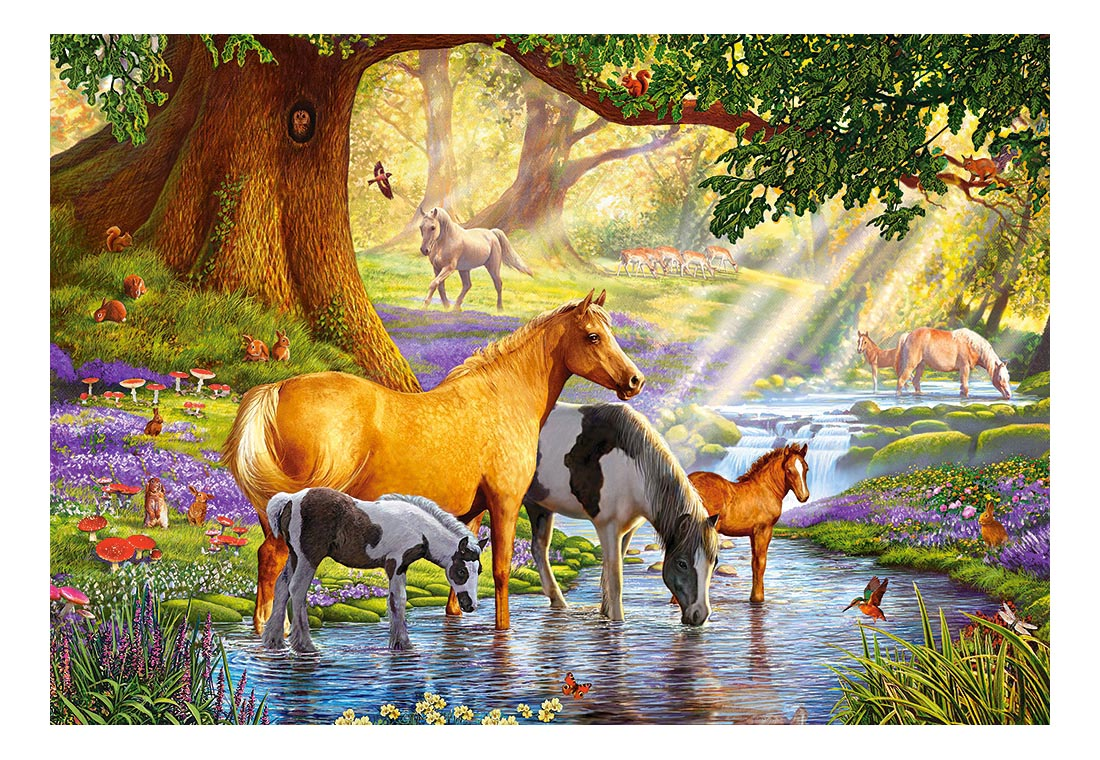 Купить Лошади на реке, Castorland Пазл Кастор 1000 лошади на реке C-103737, 1000 элементов, Пазлы