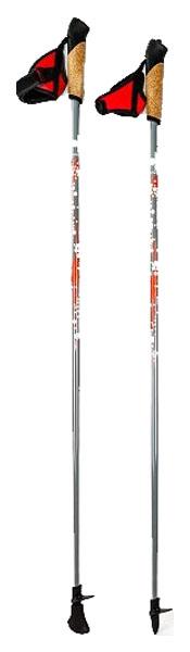 Палки для скандинавской ходьбы Finpole Eco