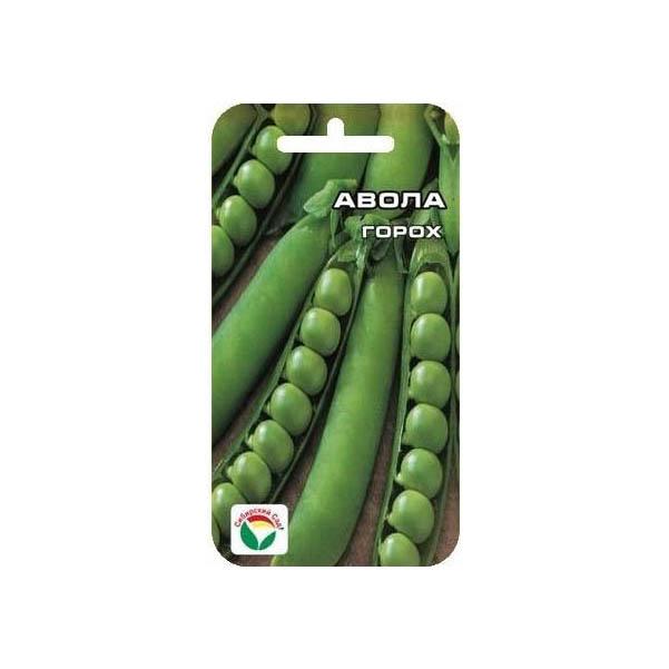 Семена Горох Авола, 20 шт, Сибирский сад