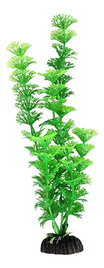 Растение аквариумное Амбулия зеленая, 30 см