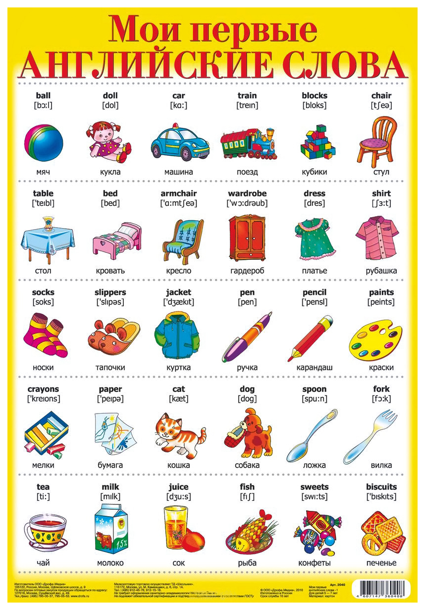 Плакат Дрофа-Медиа Мои первые Английские Слова-1