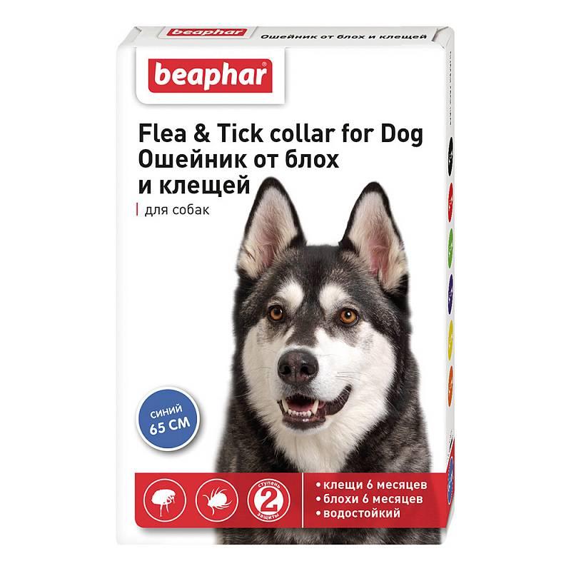 Ошейник для собак против блох и клещей