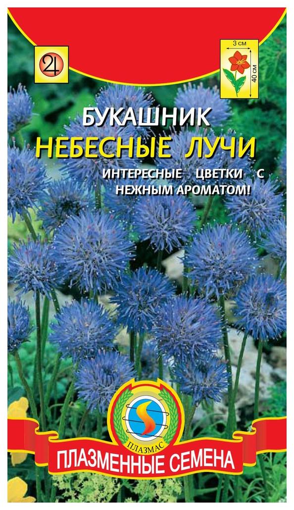 Семена Букашник Небесные лучи, 80 шт, Плазмас по цене 18
