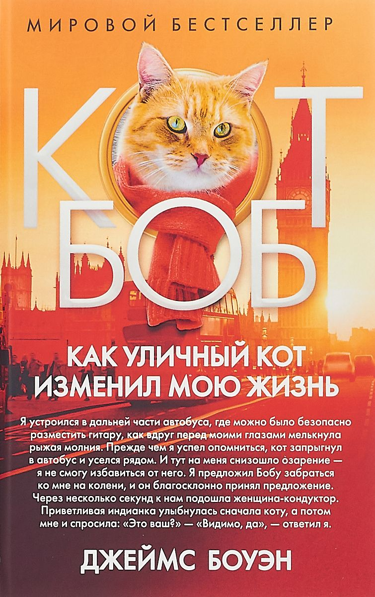 Как Уличный кот Изменил Мою Жизнь