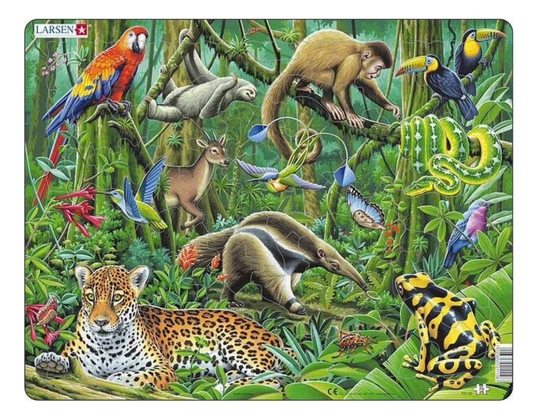 Купить Пазл Larsen Южно-Американские тропики, Пазлы