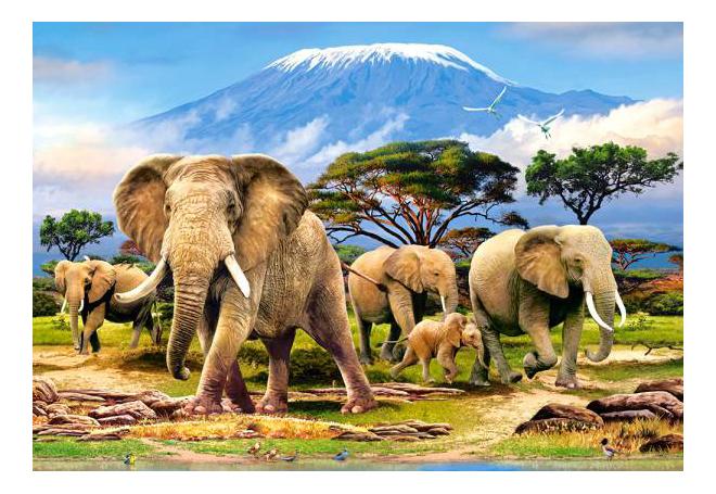 Пазл Castorland Слоны 1000 деталей
