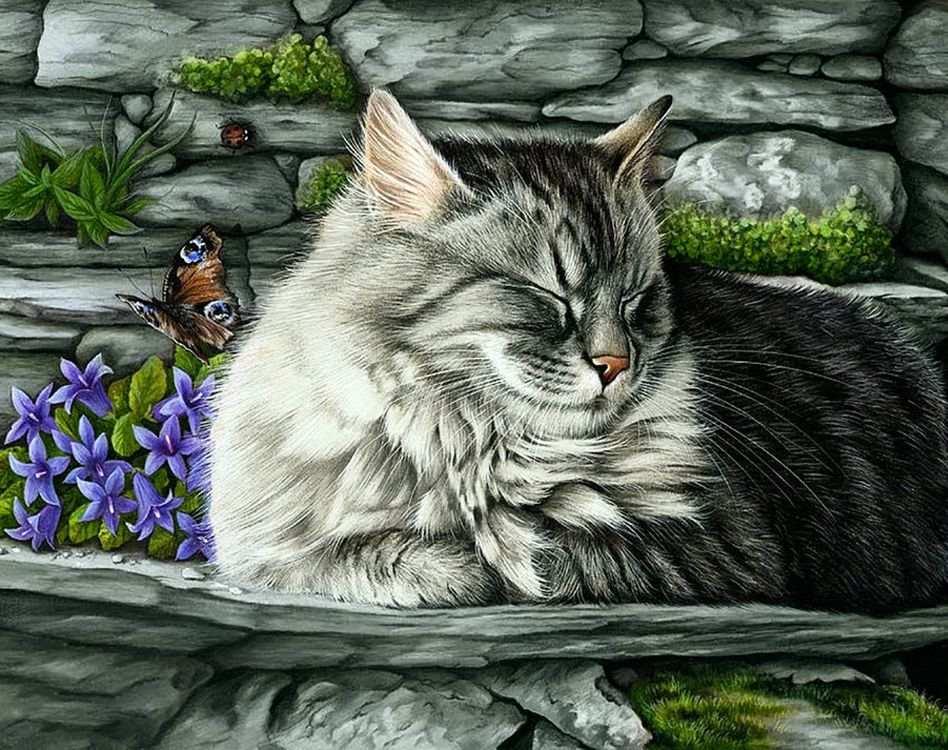 декупажные картинки с кошками займет площадь