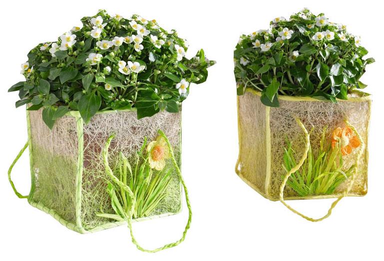 Кашпо для цветов Frank 1.5 л