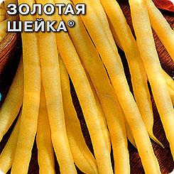 Семена Фасоль зерновая Золотая шейка, 5 г, СеДеК