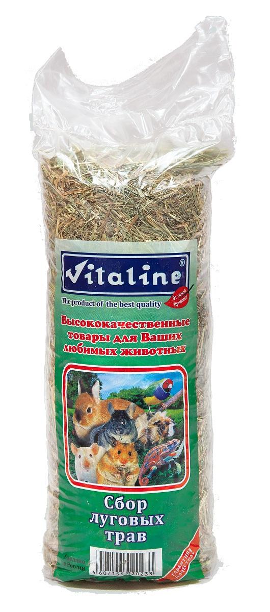 Сено для грызунов Vitaline 0.4 кг 1 шт.